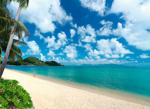 Samui Palm Beach 4*
