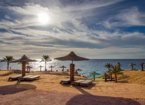 Monte Carlo Sharm Resort & Spa 5*