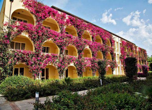 Tui Magic Life Calabria 4*