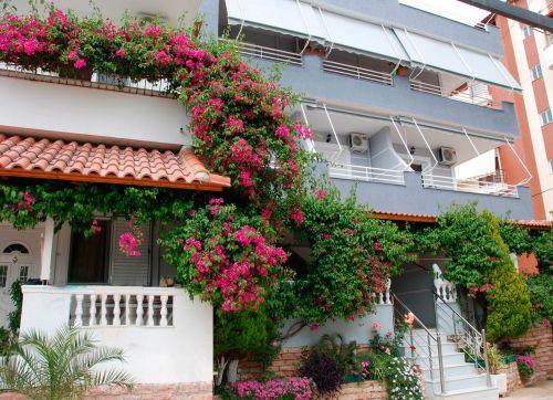 Apartment Alvi 3*